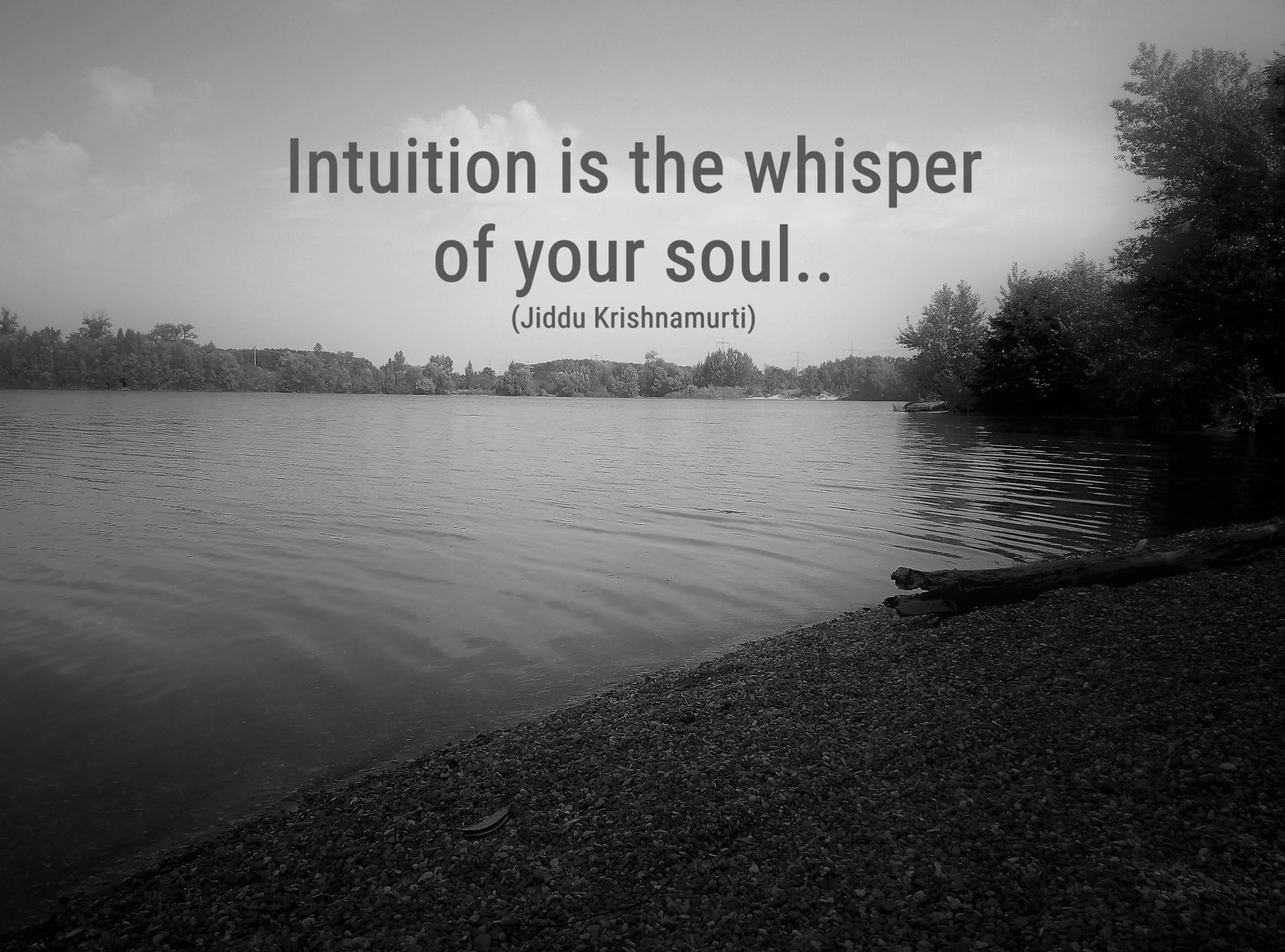 Intuition bw